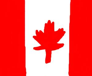 300x250 Flag