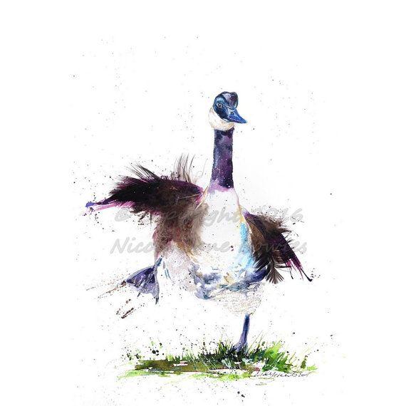570x570 1133 Best Birds Images On Bird Art, Bird Paintings
