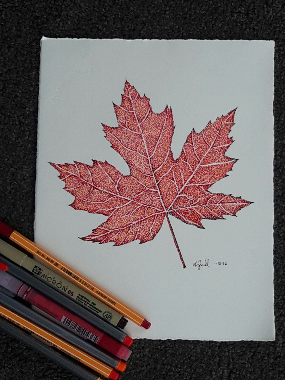 960x1280 Pointillism Drawing Of The Canadian Maple Leaf By Kristin.ivill