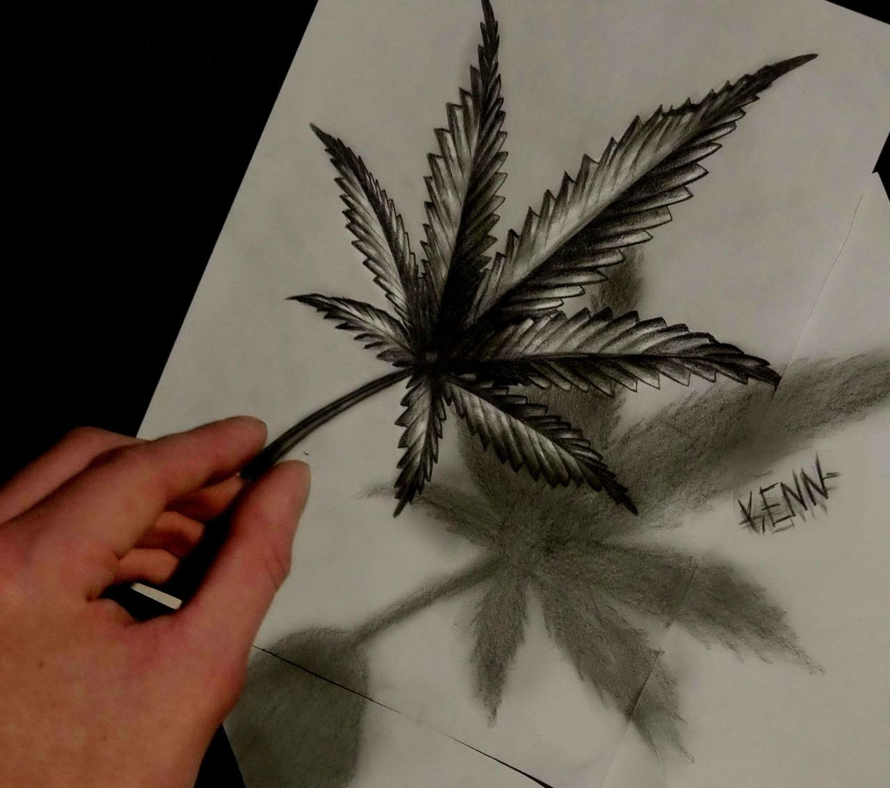 1280x1133 Drawing Of Pot Leaf Awesome 3d Drawing Of A Marijuana Leaf. Trees