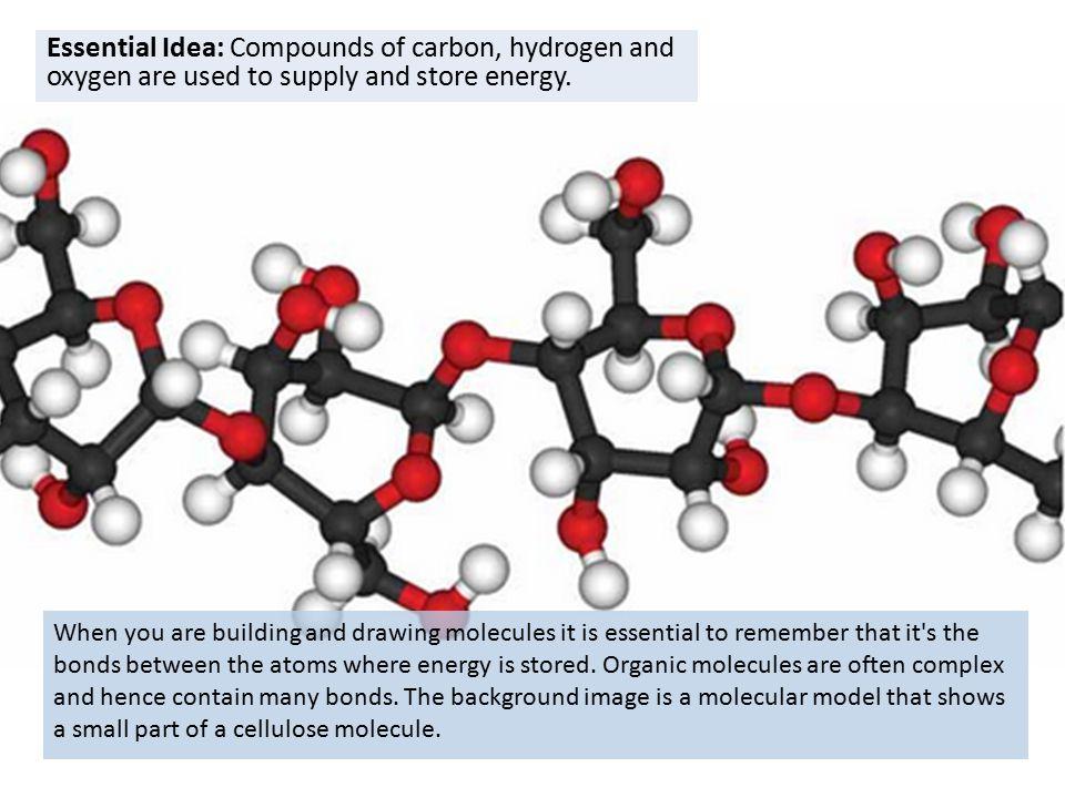960x720 Carbohydrates Amp Lipids (2.3) Ib Diploma Biology Essential Idea