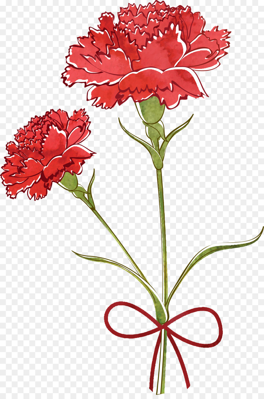 Carnation Flower Drawing at GetDrawings.com | Free for personal use ...