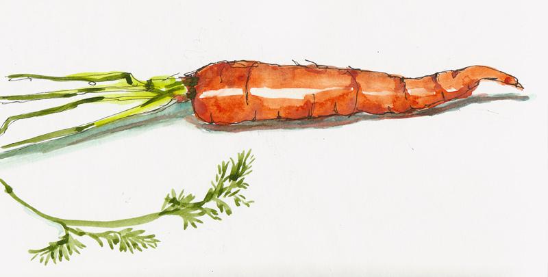 800x405 Catching Up With Carrots Jana Bouc, Artist