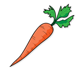 273x240 Search Photos Carrot Drawing
