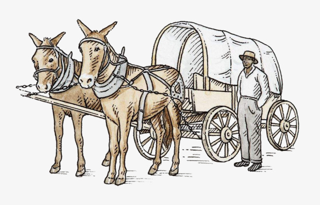 650x417 Two Mules Drawing Carts, Mule, An Animal, Draft Animal Png Image