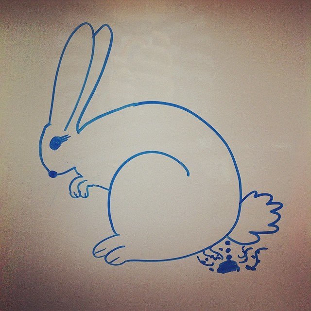 640x640 How To Draw A Cartoon Bunny Video Tutorial
