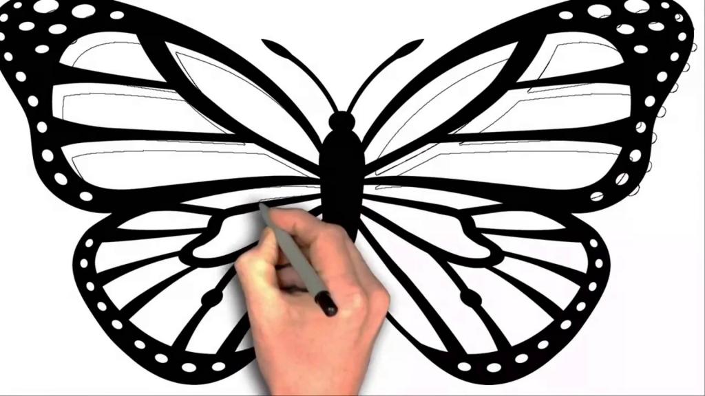 1024x576 Cartoon Butterfly Drawings How To Draw Black Butterfly Cartoon 2