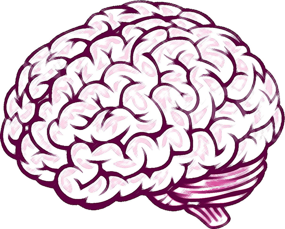 cartoon drawing of a brain at getdrawings com free for personal rh getdrawings com How to Draw a Human Brain Step by Step Not From the Side Easy How to Draw a Brain