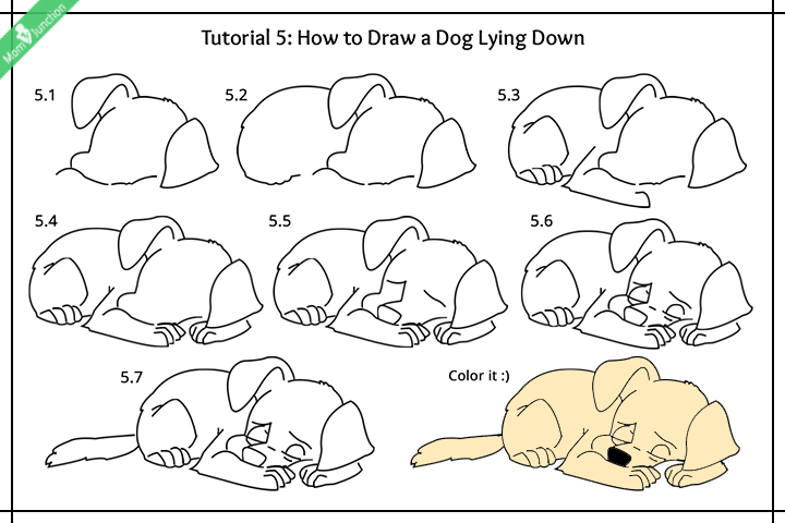 720x480 Step By Step Guide On How To Draw A Dog For Kids