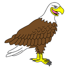 250x226 Cartoon Eagle Step By Step Drawing Lesson