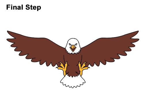 500x386 How To Draw A Bald Eagle (Cartoon)