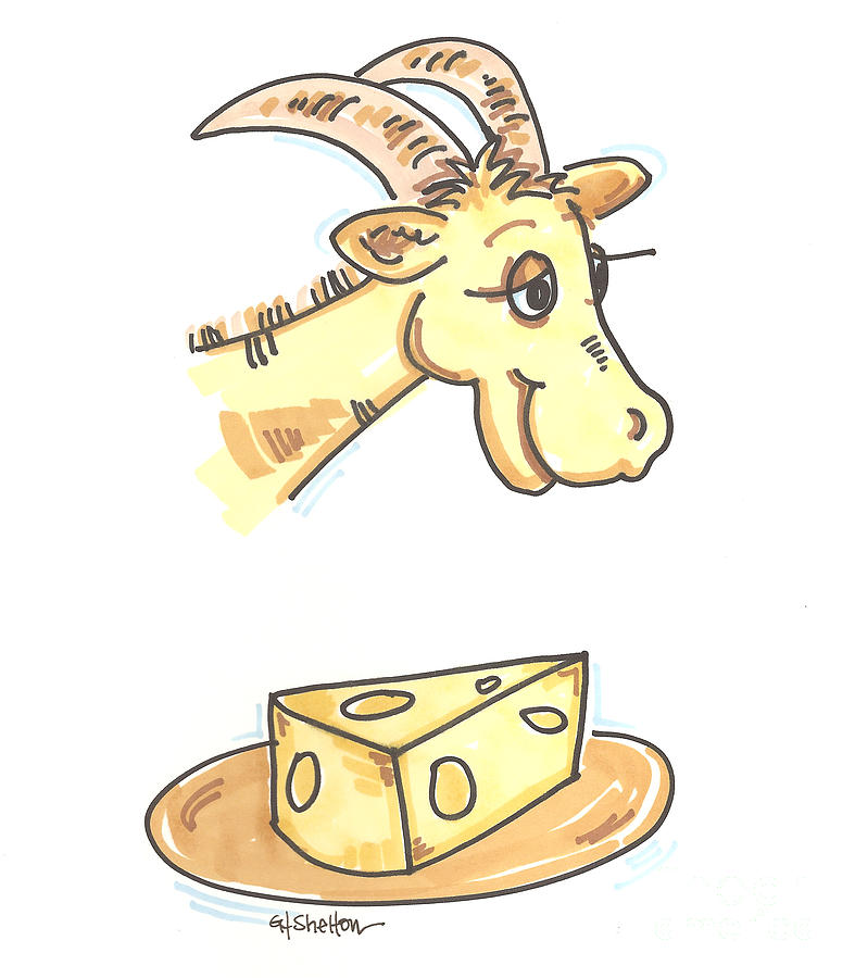 787x900 Goat Cheese Drawing By Gail Shelton