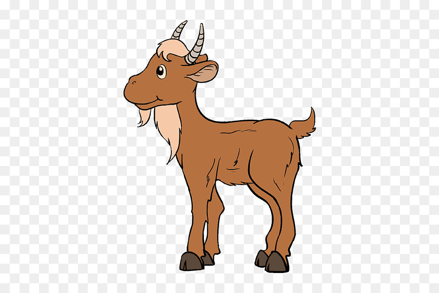 900x600 Goat Drawing Cartoon