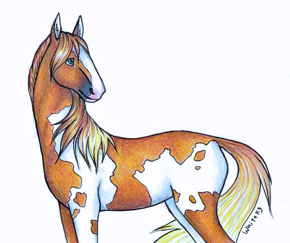 579x485 random cartoon horse by whitek9 on deviantart