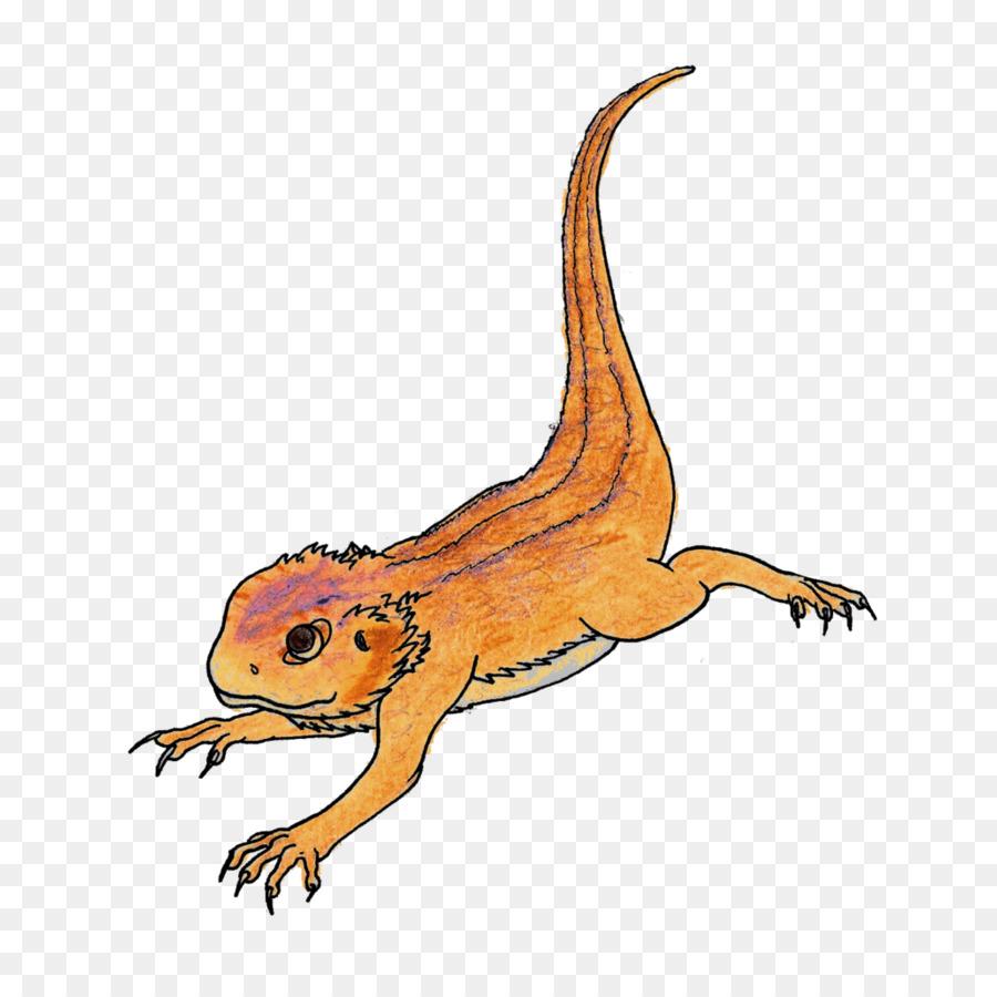 900x900 Rankins Dragon Cartoon Lizard Drawing Illustration