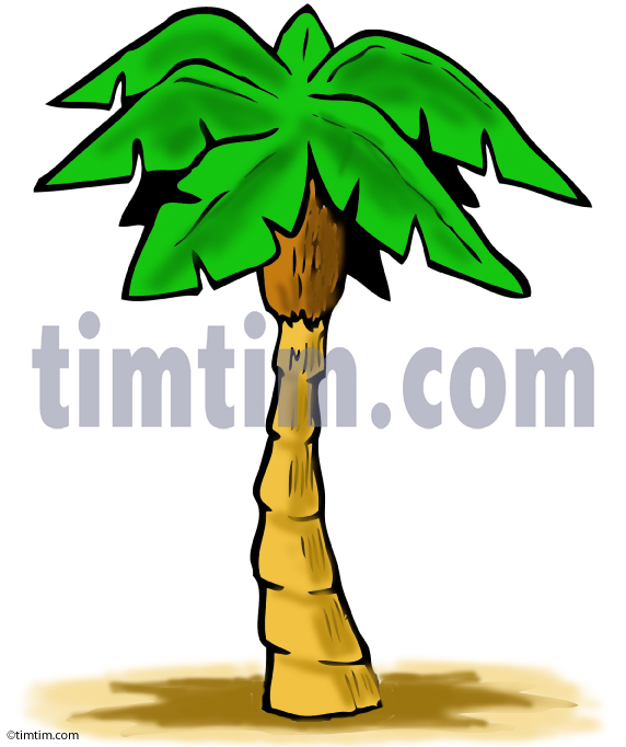 572x682 Free Drawing Of A Palm Tree From The Category Climate Amp Nature