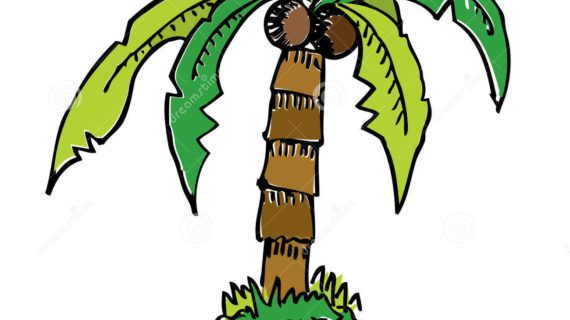 570x320 Palm Tree Cartoon Drawing Palm Tree Clip Art And Cartoons On Palm