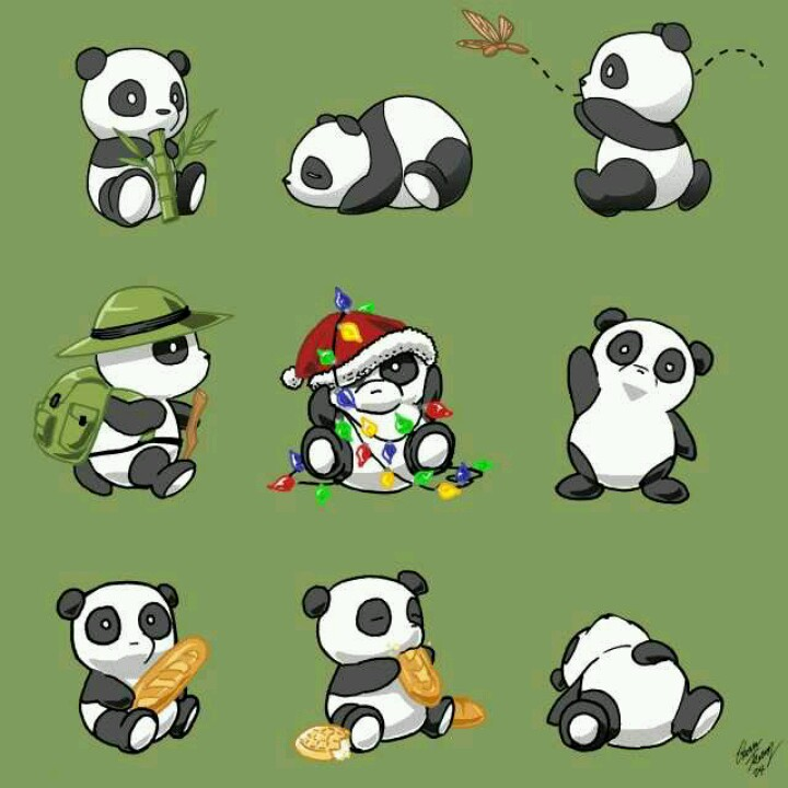 720x720 Cartoon Pandas