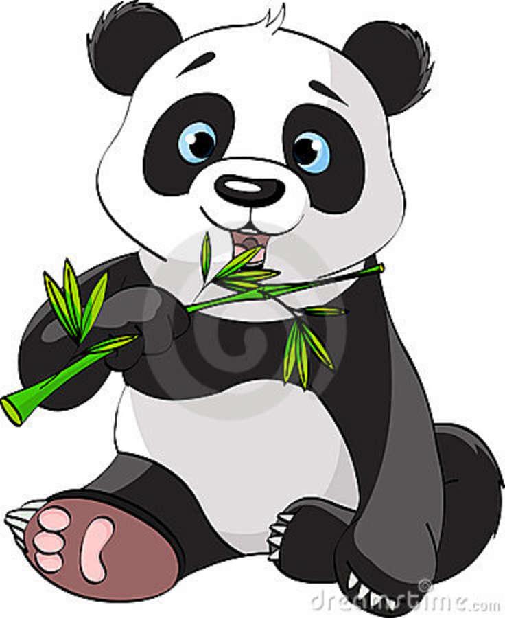 736x900 Cartoon pandas Panda Eating Bamboo Stock Photography