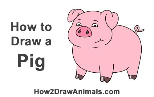 500x315 How To Draw A Pig (Cartoon)