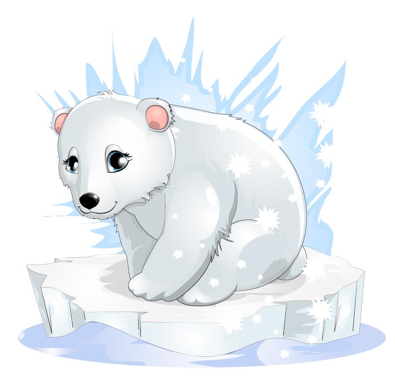 810x790 Baby Polar Bear Drawing