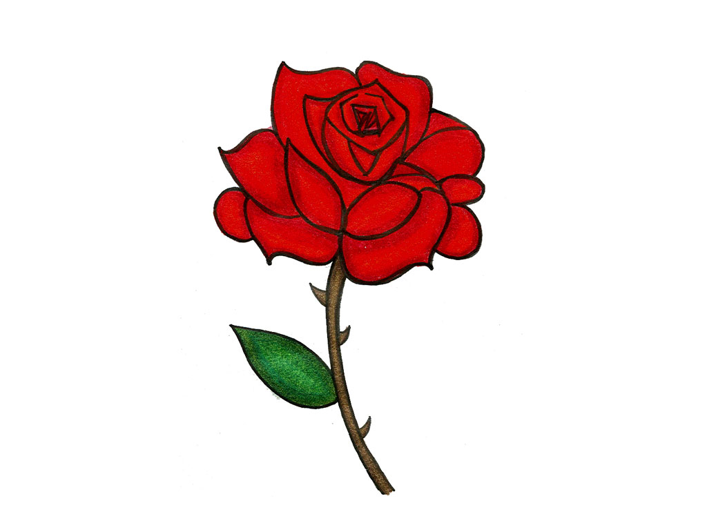 1024x768 Cartoon Rose Drawing Rose Cartoon Drawing Red Rose Cartoon