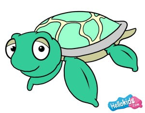 300x233 How To Draw How To Draw A Sea Turtle