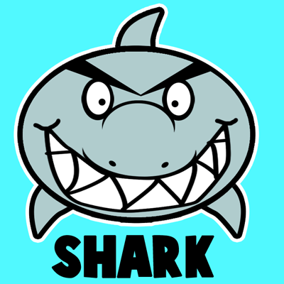 400x400 How To Draw A Cartoon Shark With Easy Step By Step Drawing