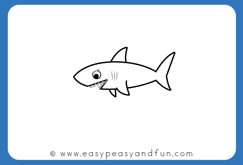 796x542 How To Draw A Shark