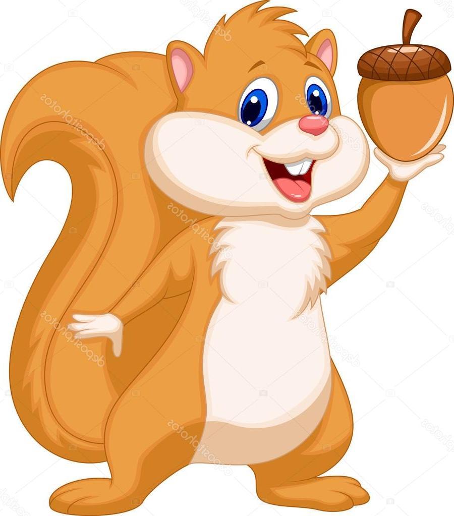 900x1023 Squirrel Cartoon Drawing