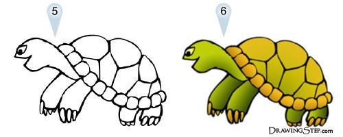 500x200 Cute Cartoon Turtle Step By Step