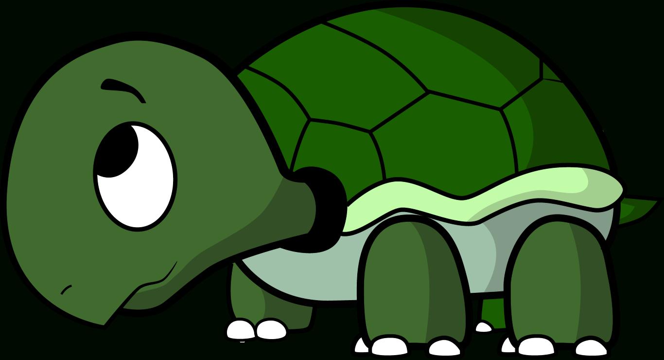 1366x740 Turtle Cartoon Drawing