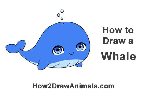 500x315 How To Draw A Whale (Cartoon)