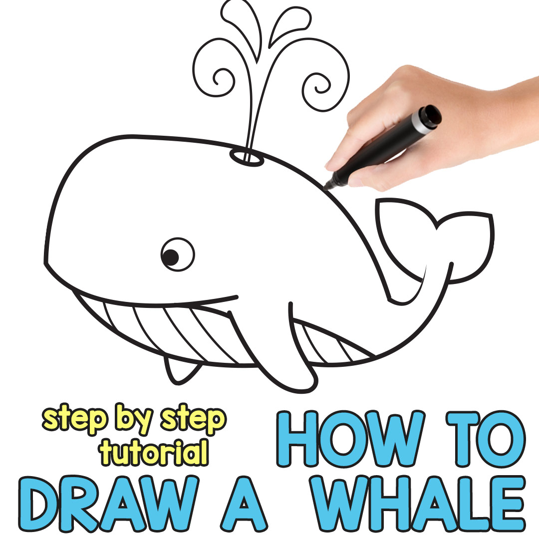 1080x1080 How To Draw A Whale Step By Step (Cartoon Style)