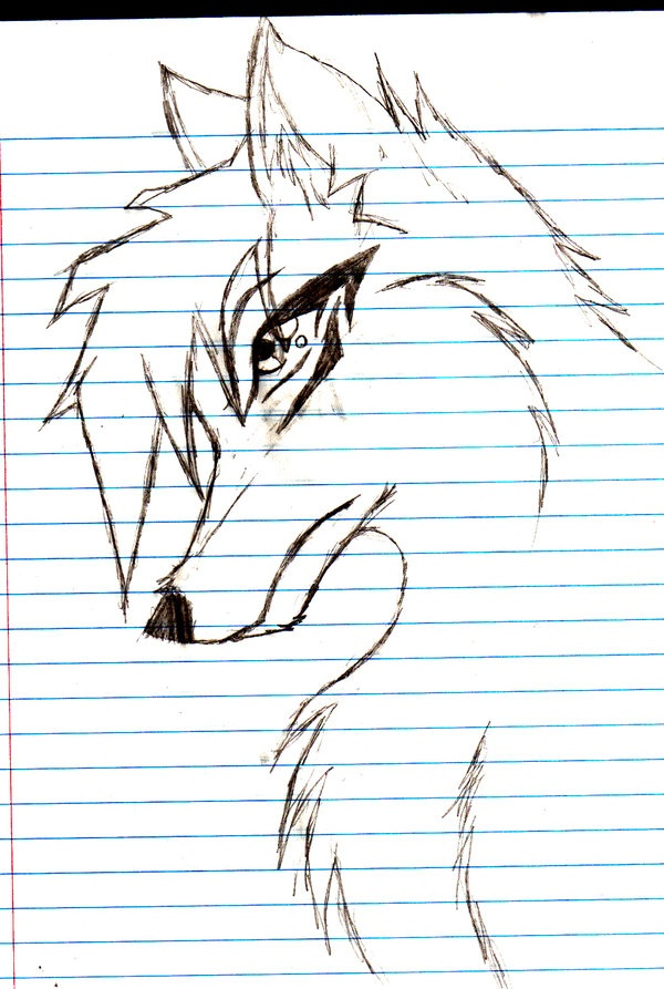 600x893 Draw Anime Wolves Anime Wolf, Wolf And Anime