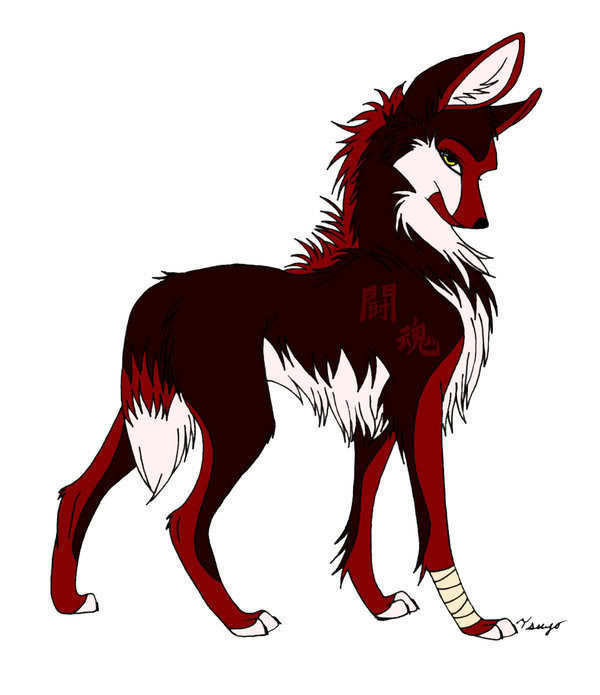600x695 really cool anime wolf drawing by derpthewolf101 on deviantart
