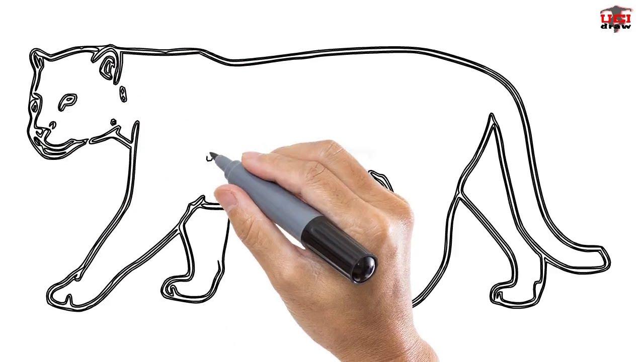 1280x720 How To Draw A Cartoon Jaguar How To Draw A Jaguar Easy Stepstep