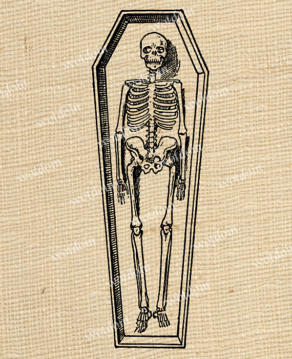 570x700 Skeleton Bones Coffin Anatomy Corpse Dead Guy Casket Halloween