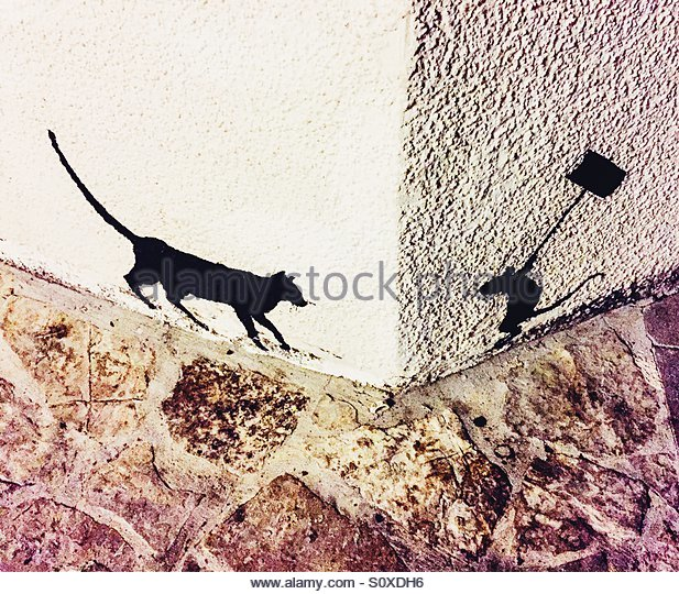 617x540 Cat And Mouse Drawing Stock Photos Amp Cat And Mouse Drawing Stock