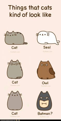 236x463 108 Best Cute Cartoon Animals Images On Kitty Cats