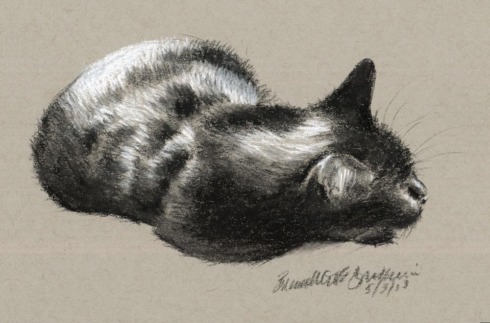 1000x660 Daily Sketch Reprise A Vigilant Nap, 2013 ~ The Creative Cat
