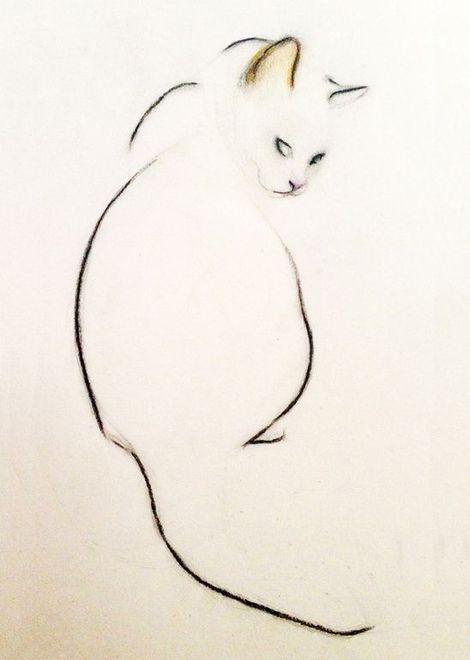 470x660 Kellas Campbell, Charcoal Pencil Cat On Artstack