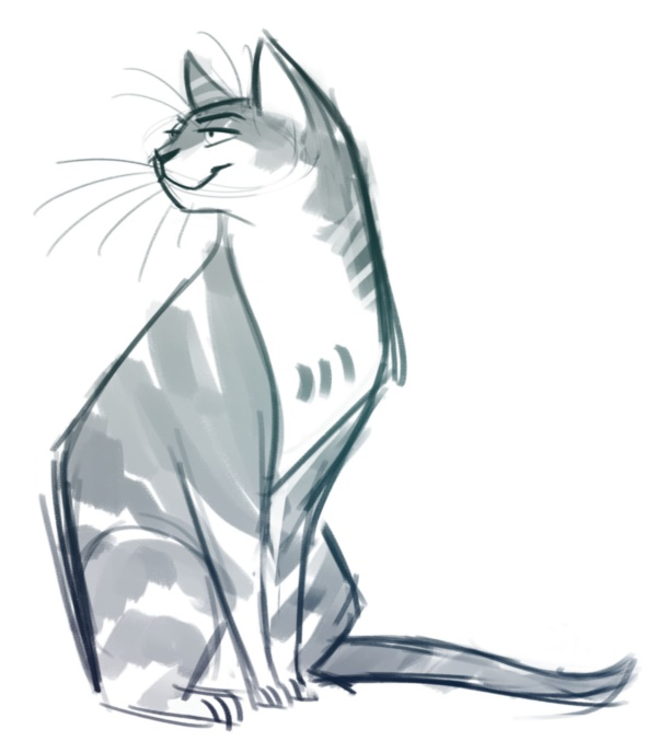 600x688 40 Simple Cat drawing Examples anyone Can Try