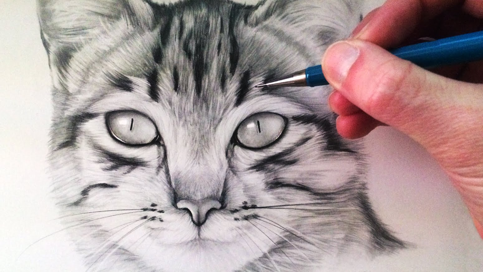 1550x872 How To Draw A Cat
