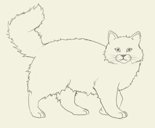 500x413 How To Draw Cat