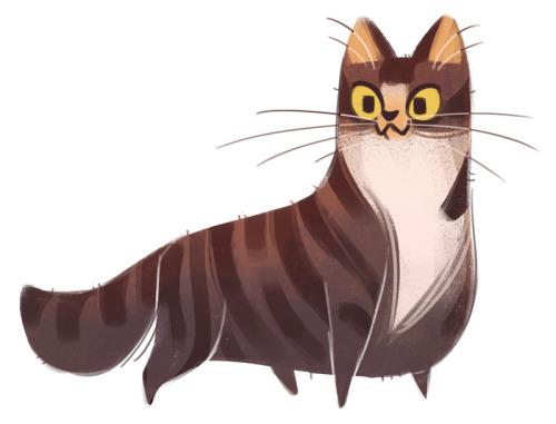 500x381 Cat Drawing Cats Sketch Tabby Daily Cat Drawings Dailycatdrawings