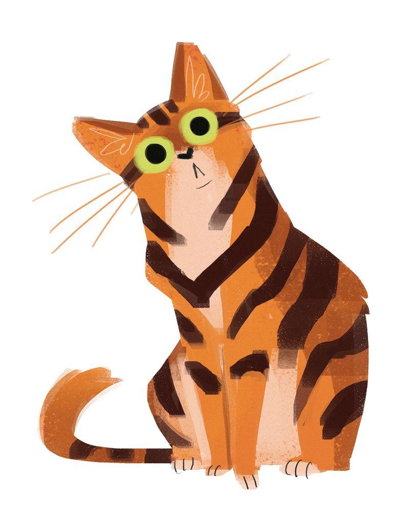 800x1006 Daily Cat Drawings 510 Orange Cat Weird Art