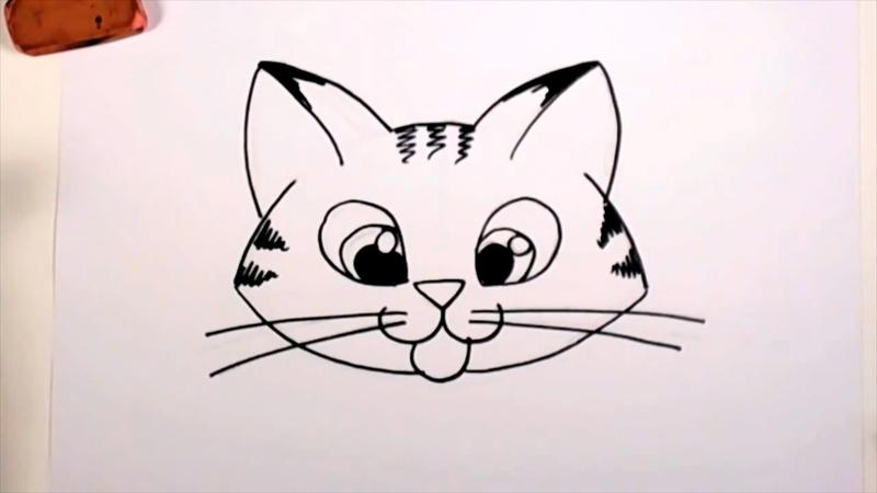 800x450 Drawing A Cartoon Tabby Cat Face