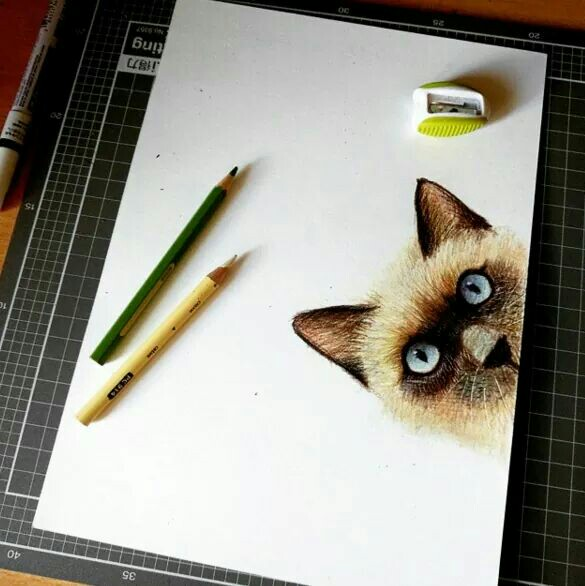 585x586 Pin By Chitra On Colour Pencils Drawings Color