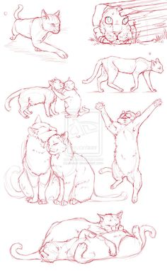 236x381 Cat Gestures